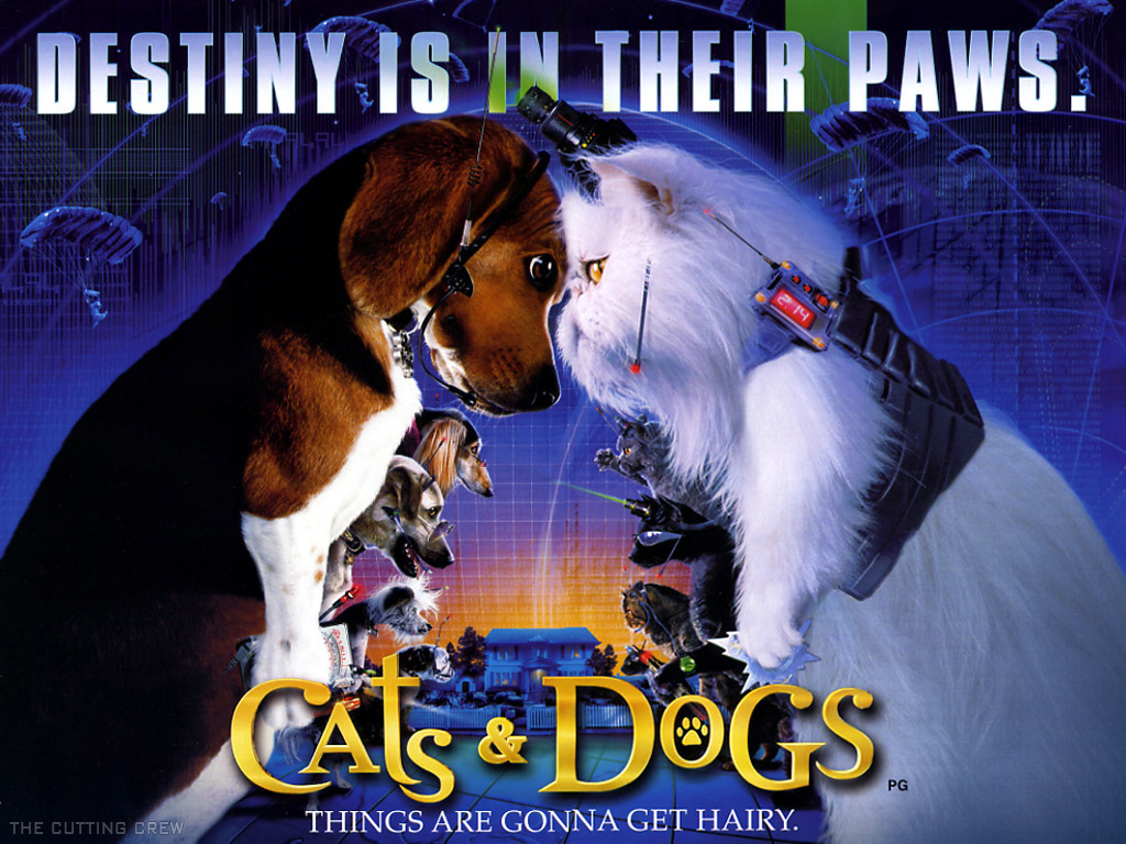 Vapic Wallpapers: Cats And Dogs The Revenge Of Kitty ...
