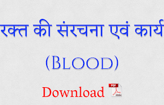blood in hindi