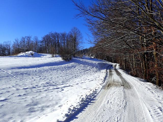 Szlak na Lubomir (od Przełęczy Jaworzyce)