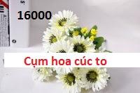Phu kien hoa pha le o Ngoc Thuy