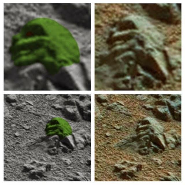 cb9c8e7d203bbd2ad59deaa6fc5aafdf3ccfb10f - El Mars Rover descubre rostro reptiliano petrificado en Marte