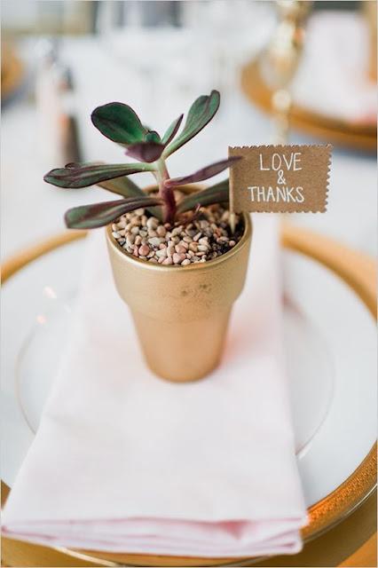 zaproszenia w stylu rustykalnym, kaktus, mini sukulenty