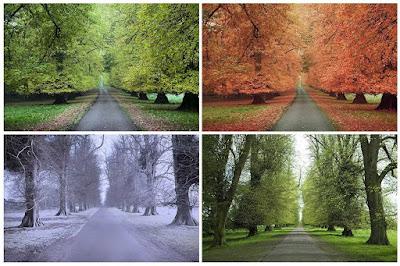 Changing four seasons road trip