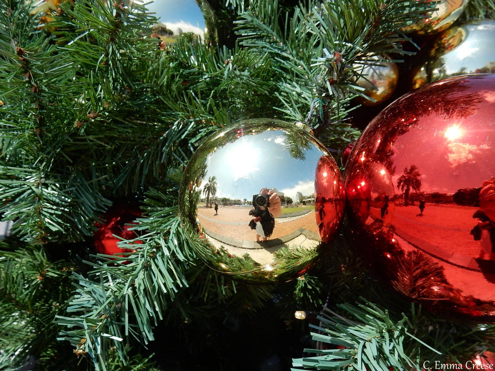 Kiwi Christmas Adventures of a London Kiwi