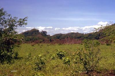 Guanacaste Province, Costa Rica, rainy season