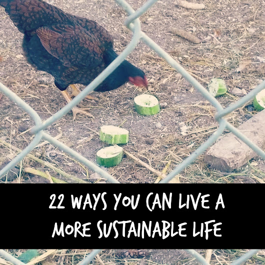 22 Ways You Can Live A More Sustainable Life