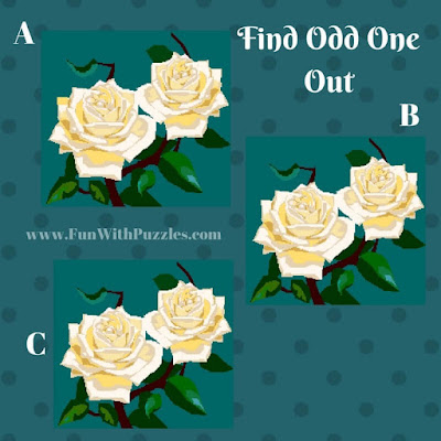 Odd One Out Picture Puzzle Rose