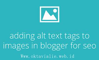 Optimasi SEO Menambahkan Alt Tag teks Pada Gambar