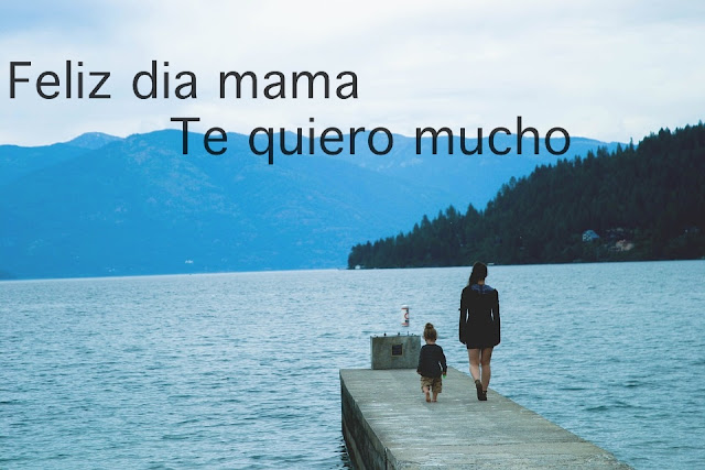 feliz dia mama te quiero mucho