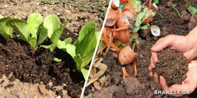 Φτιάξτε Κομπόστ στον Κήπο Σας για Βιολογική Λίπανση των Φυτών σας Όλο το Χρόνο! Διαβάστε πως να το κάνετε!