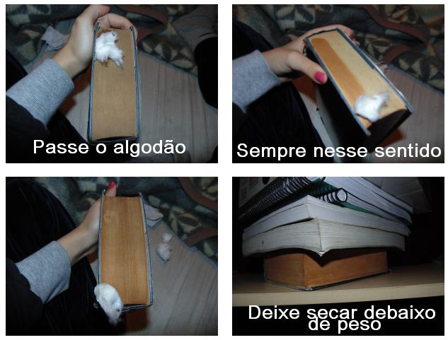 Como limpar livros, aprenda a limpar seus lindos e preciosos livros.