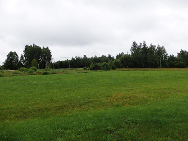 Krajobrazy na Łotwie (lipiec 2014).