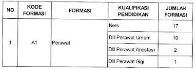Non PNS Kementerian Kesehatan RI Tahun 2016