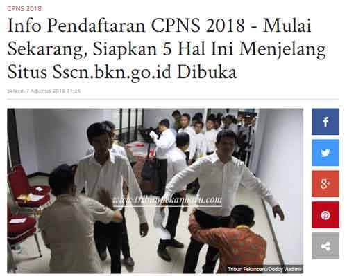 berita cpns dari pekanbaru tribunnews