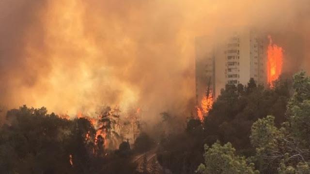 Sudah 3 Hari Israel Masih Dilanda Kebakaran Hebat, Ada Apa? : kabar Terupdate Hari Ini