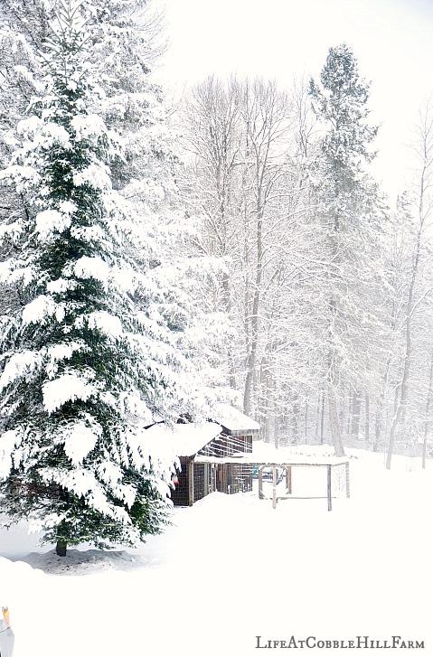 snow hill chatrooms Læs de seneste nyheder online fra danmark og udlandet.