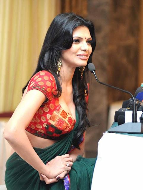 damn hot photo of sherlyn chopra