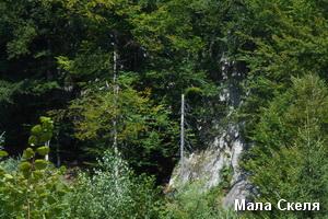 Підніжжя Малої Скелі
