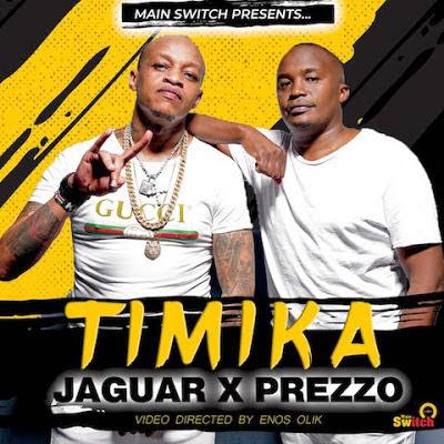 Jaguar X Prezzo – Timika