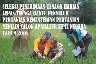 Seleksi Penerimaan Cpns Tenaga Penyuluh Pertanian Kementerian