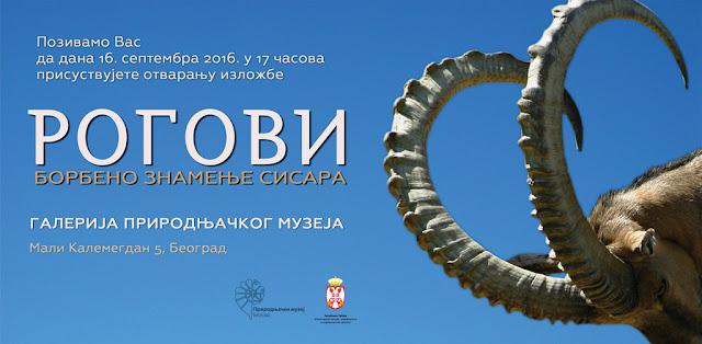 """Nova izložba Prirodnjačkog muzeja """"Rogovi – borbeno znamenje sisara"""""""