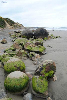 Moeraki Boulders (Nueva Zelanda) - New Zealand