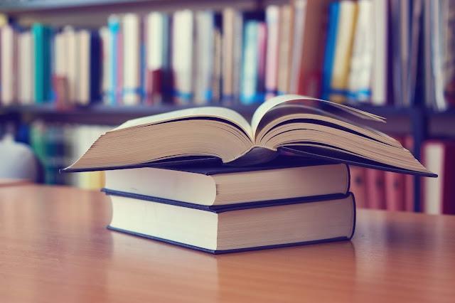 Bibliotecas comunitárias auxiliam na democratização da leitura