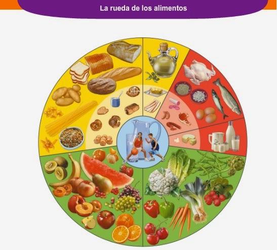 INSTITUTO JUAN SALVADOR GAVIOTA: La rueda de los alimentos