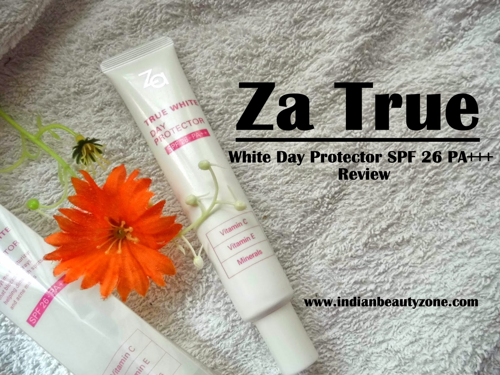 Day cream for oily skin