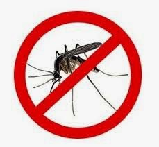 Inilah Warna Dinding Yang Tidak Disukai Nyamuk