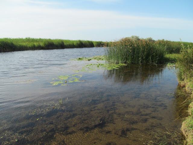peisaj superb delta canal sfantu gherghe sulina