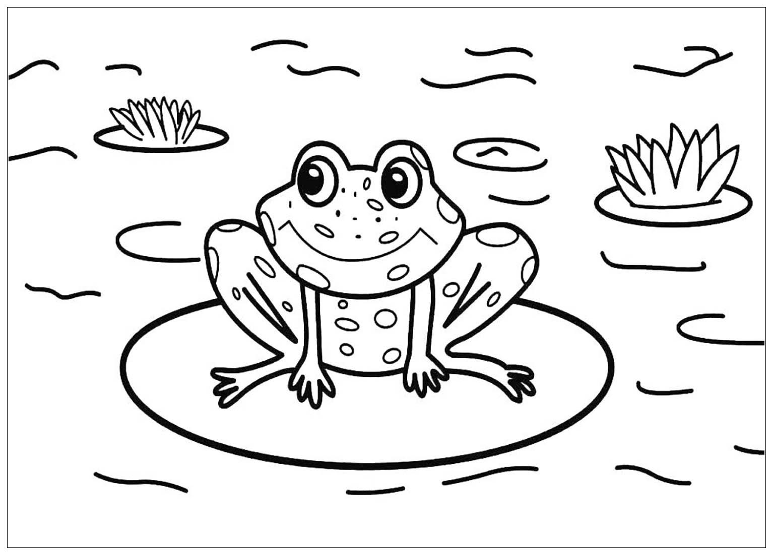 Tranh tô màu con ếch ngồi trên lá hoa súng