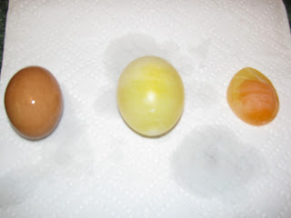 Franklin County Library Between the Bookends: Naked Eggs
