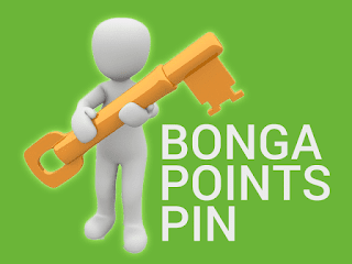 bonga points pin