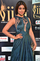 Shriya Saran in Beautiful Transparent Dark Gown IIFA Utsavam Awards 2017 048.JPG
