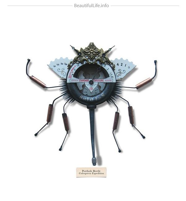 creatividad y diseño de insectos