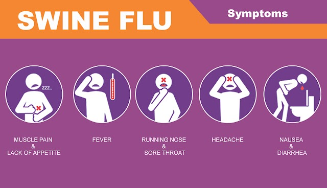 #Health : 542 people have died of swine flu so far this year in India .