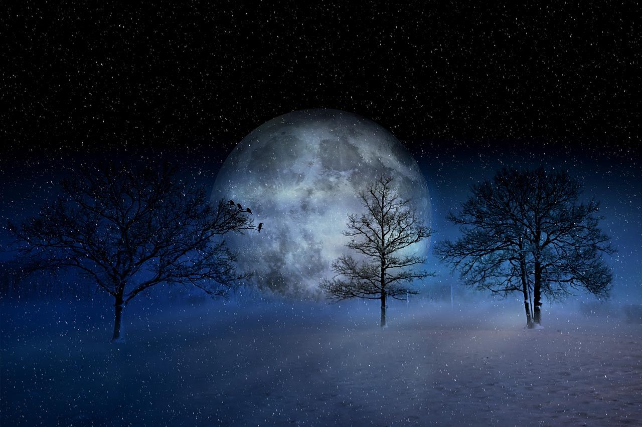 The Mystical Moon: February 2019