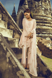 tena-durrani-women-formal-wear-dresses-collection-2017-by-al-zohaib-10
