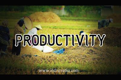 produktivitas, pekerjaan, kesehatan, meningkatkan produktivitas