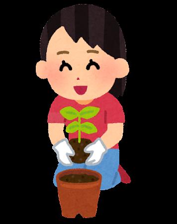 苗植えのイラスト(鉢)