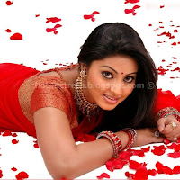 Sneha hot saree pics