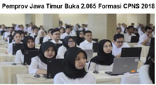 Pemprov Jawa Timur Buka 2.065 Formasi CPNS 2018