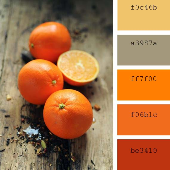 orange fruit color palette