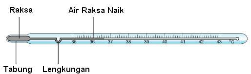 Termometer Merkuri Untuk Suhu Badan