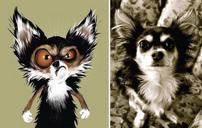 Animais desenhados com base na personalidade