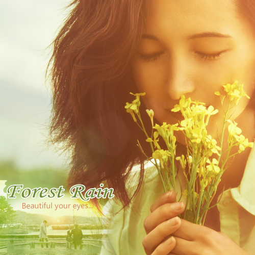 [Single] Forest Rain – Beautiful Your Eyes