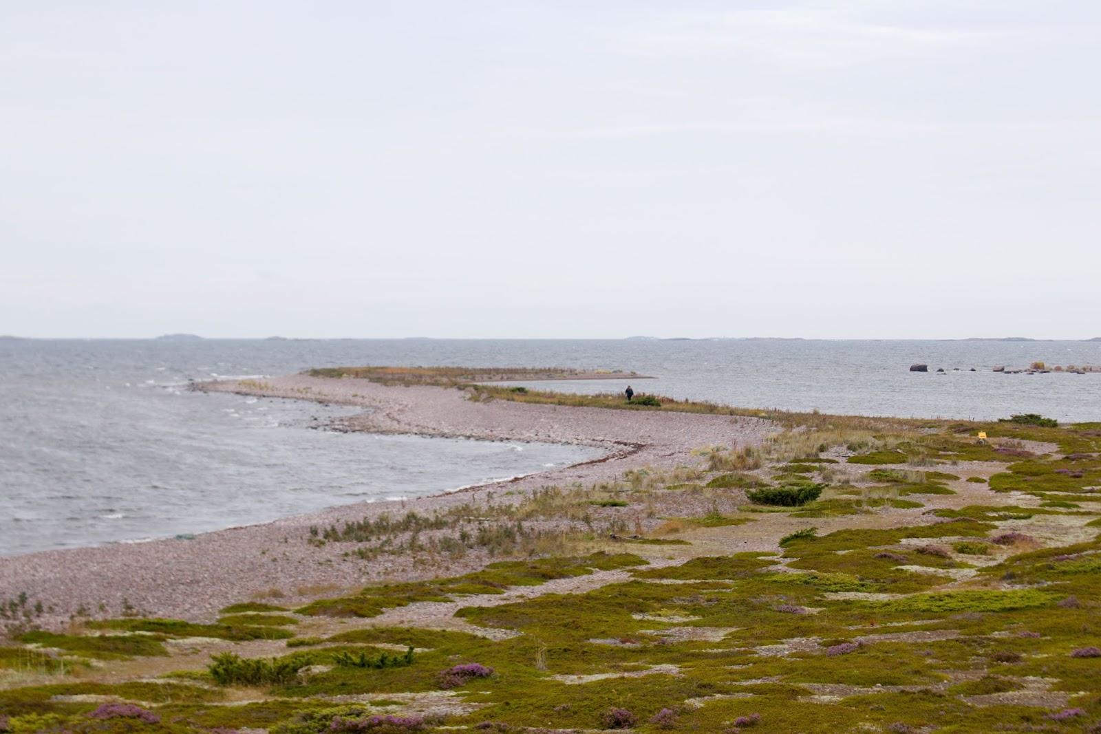 Revlanin niemenkärki Jurmon länsipäässä rajoitusalueella
