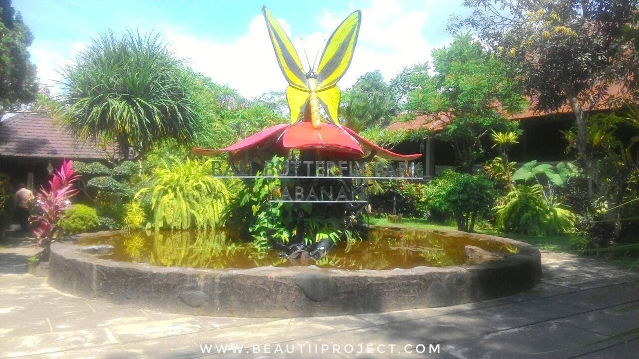 Taman Kupu Kupu Objek Wisata Dan Edukasi Beautii Project