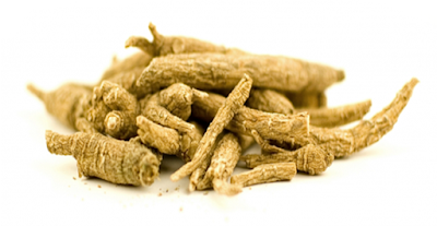 Amazing Health Benefits Of  American Panax Ginseng